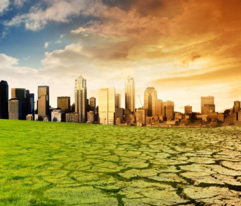 10 Completely Weird Climate Myths Busted